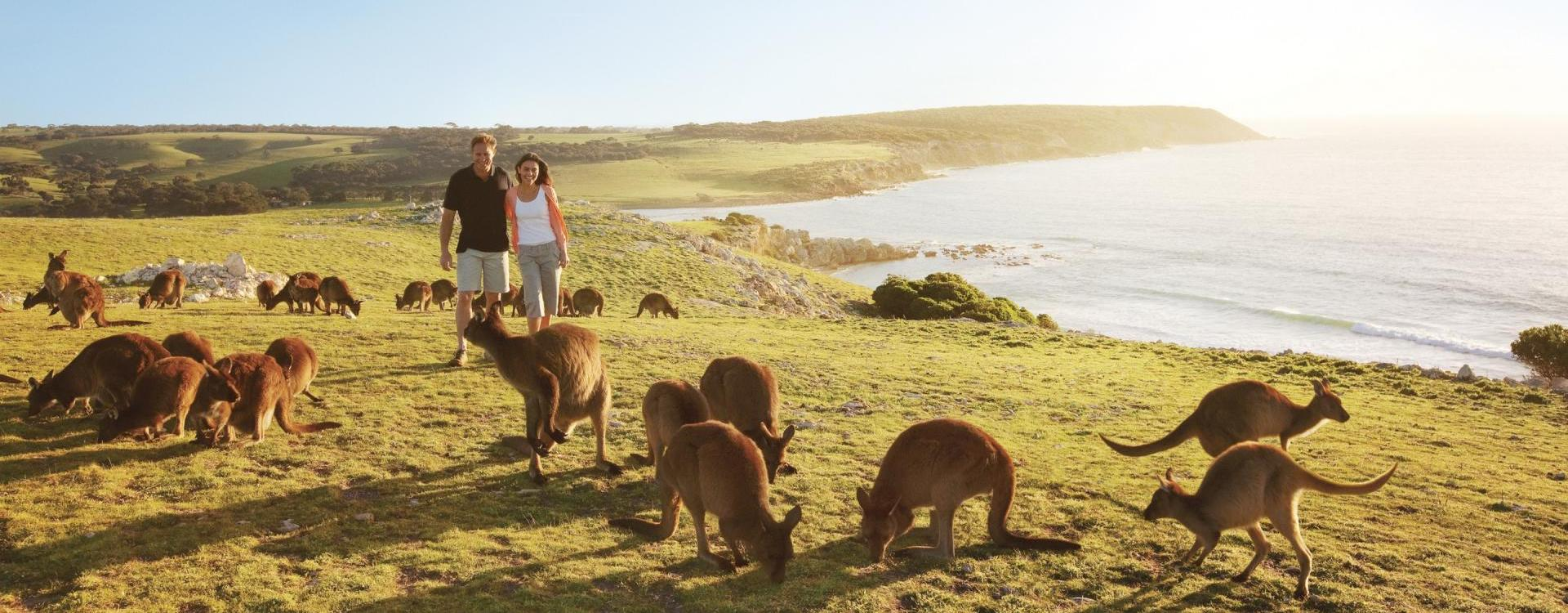 Australia Package Tours - For the best Australian Holiday